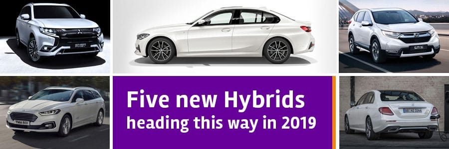 Five new hybrids for 2019
