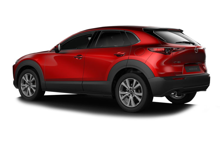 CX-30 Back Image